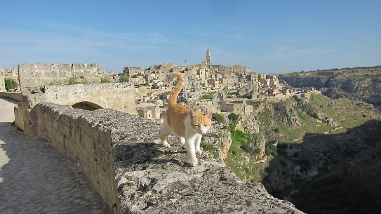 "European Capital of Culture -In Matera ""the stones"" are reborn"